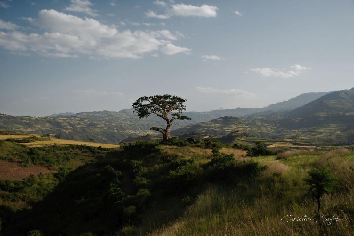 hochland äthiopien