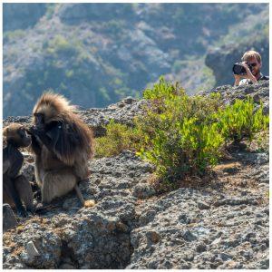 fotoreise äthiopien