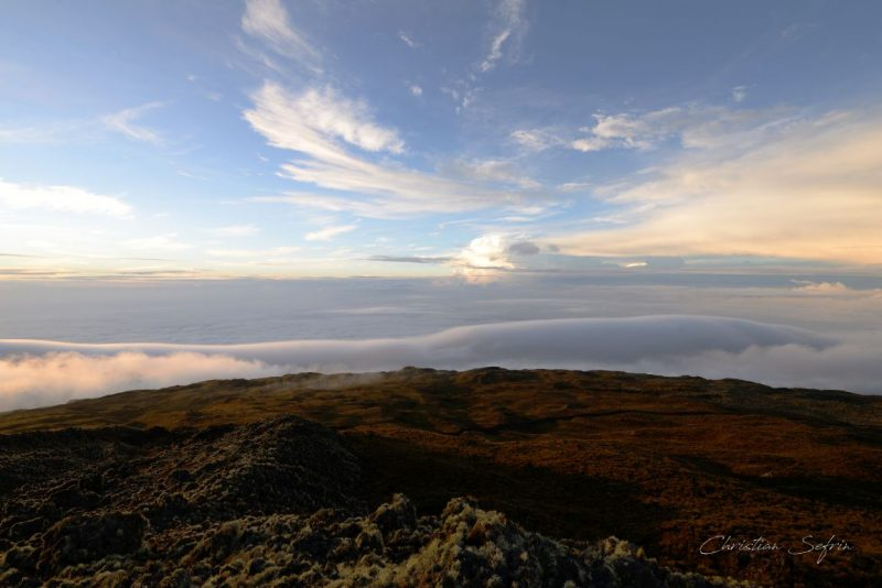 landschaft mount cameroon nationalpark