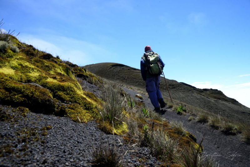 trekking mount cameroon nationalpark